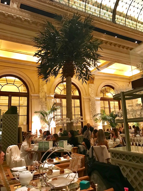 Plaza Palm Court 2